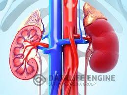 Перинефрит - симптомы, диагностика, лечение