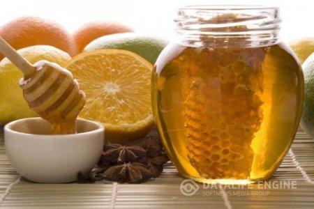 Лечебные свойства меда и его разновидности
